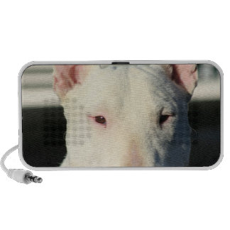 Bull terrier doodle speaker