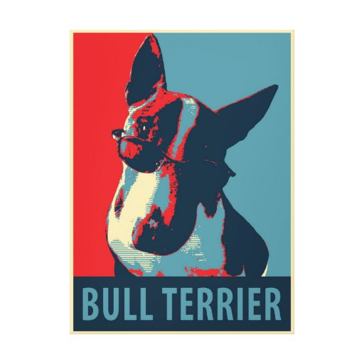 Bull Terrier Political Parody Stretched Canvas Prints