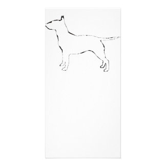Bull Terrier silo Photo Greeting Card