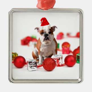 Bulldog Christmas Gift Box Ornaments Red Santa Hat