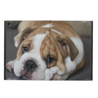 Bulldog Cover For iPad Air