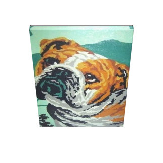 bulldog custom print paint by numbers
