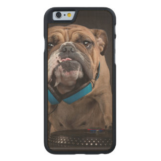 bulldog dj - dj dog carved maple iPhone 6 case