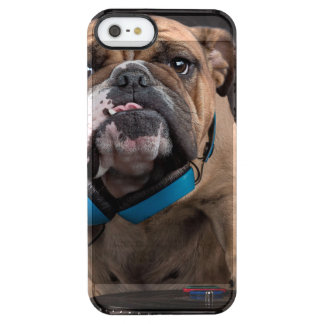 bulldog dj - dj dog clear iPhone SE/5/5s case