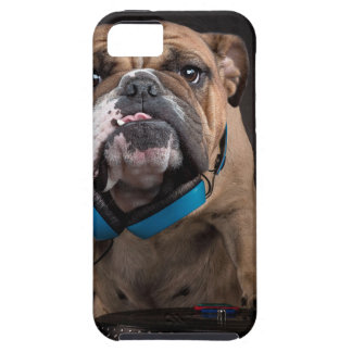bulldog dj - dj dog iPhone 5 case