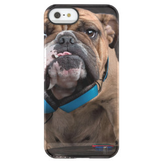 bulldog dj - dj dog permafrost® iPhone SE/5/5s case