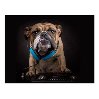 bulldog dj - dj dog postcard