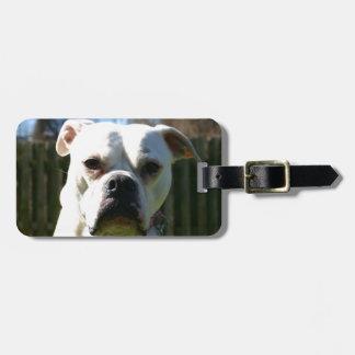 Bulldog Face Bag Tag