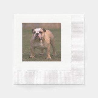 bulldog full 2.png disposable napkin