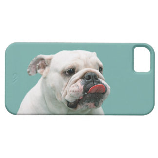 Bulldog funny face with tongue sticking out, gift barely there iPhone 5 case