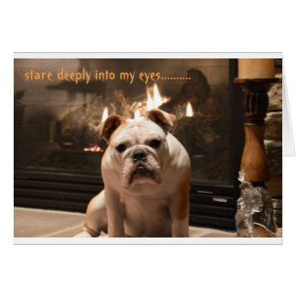 Bulldog Get Well Card