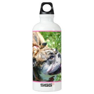 Bulldog Liberty Water Bottle