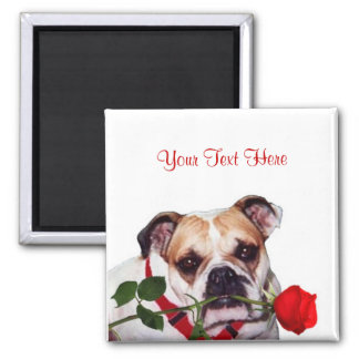 Bulldog Maddie Red Rose Valentine Design Square Magnet