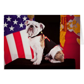 Bulldog Navy Official Mascot Dog Card