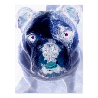 bulldog negative postcard