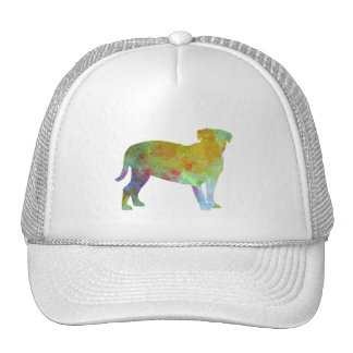 Bulldog of Bordeaux in watercolor Cap