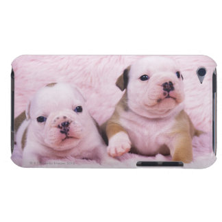Bulldog; often called the English Bulldog. Is a Barely There iPod Covers