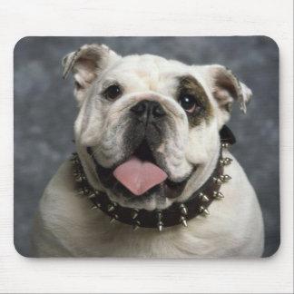Bulldog Puppy Dog  With Spike Collar Mousepad