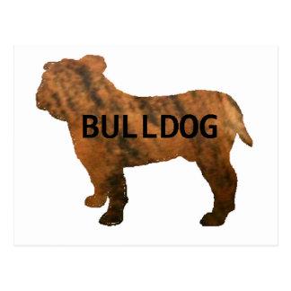 bulldog red brindle name silo postcard