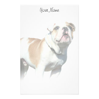 Bulldog stationary stationery