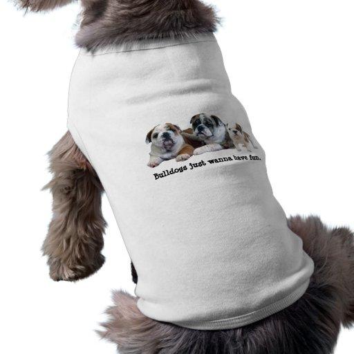 Bulldog Trio Pet Clothing