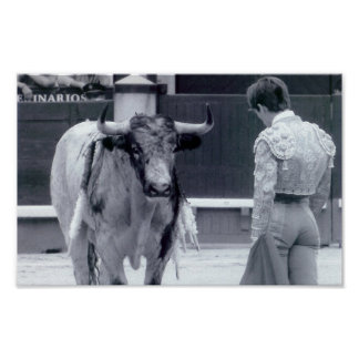Bullfight stand off poster