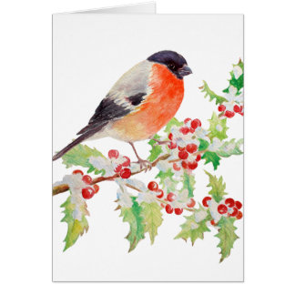 Bullfinch on Holly Branch in Snow Greeting Card