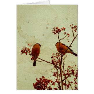 Bullfinch on Rowan Textured 2 Card