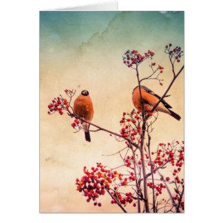 Bullfinch on Rowan Textured 3 Card