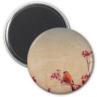 Bullfinch on Rowan Textured 6 Cm Round Magnet