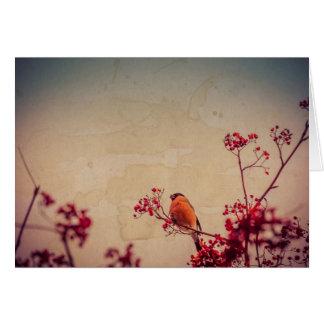 Bullfinch on Rowan Textured Card