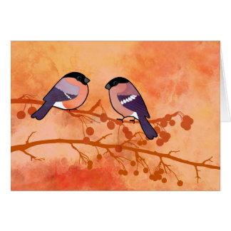 Bullfinch (Pyrrhula pyrrhula) Card