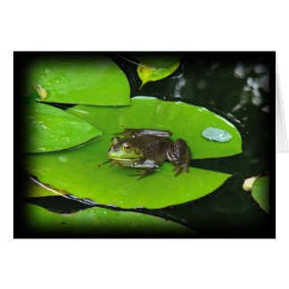 Bullfrog on Lilypads Card