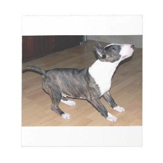 Bullterrier puppy notepad