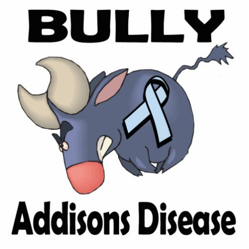 BULLy Addisons Disease Photo Cut Out
