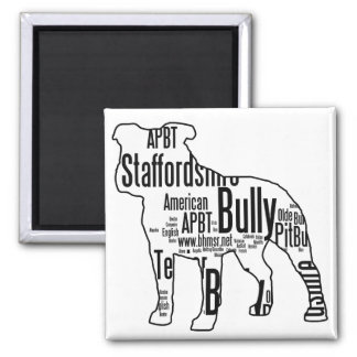 Bully Words Magnet