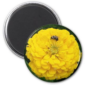 Bumble Bee 6 Cm Round Magnet
