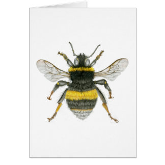 Bumble Bee Greetings Card