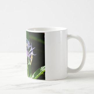 bumble bee,on a bachelor button mug