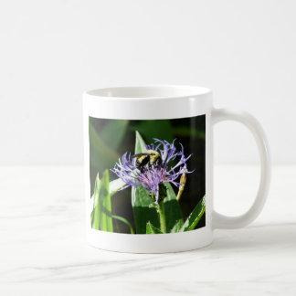 bumble bee,on a bachelor button coffee mug