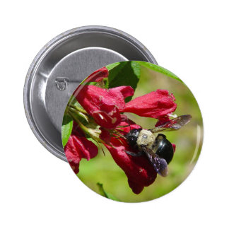 Bumble Bee on a Flower Button