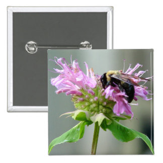 Bumble Bee on Bee Balm Flower Button