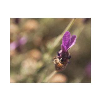Bumble Bee on Purple Lavender Flower Canvas Canvas Print