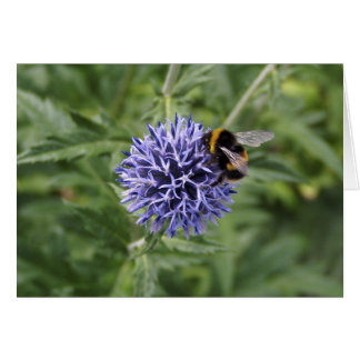 Bumble Bee on Thistle Card