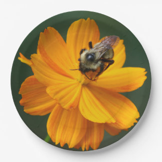 Bumble Bee, Paper Plates. 9 Inch Paper Plate