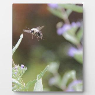 Bumble Bee Plaque