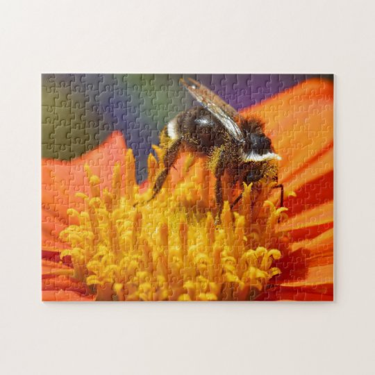 Bumble Bee Puzzle Design