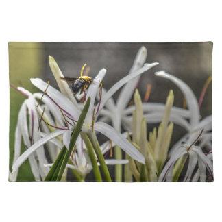 BUMBLE BEE RURAL QUEENSLAND AUSTRALIA PLACEMAT