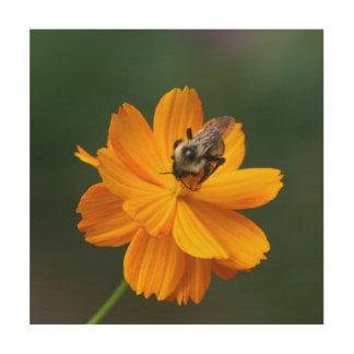 Bumble Bee, Wood Photo Print. Wood Wall Art