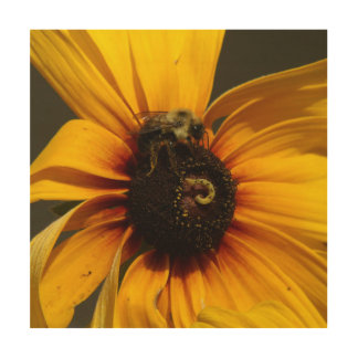 Bumble Bee, Wood Photo Print. Wood Wall Decor